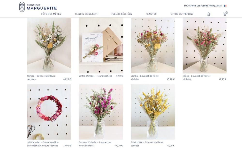 monsieur-marguerite-fleurs-sechees